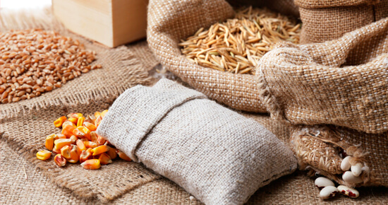 kak-pravilno-hranit-semena