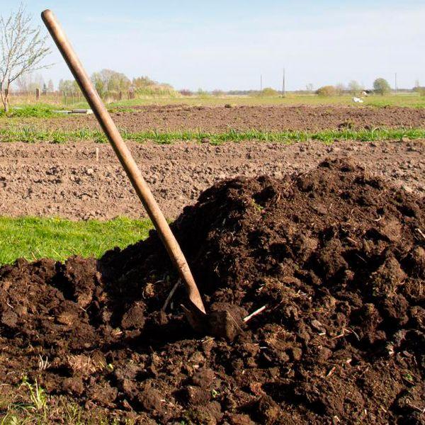 навозная куча органическое удобрение