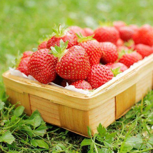 органические удобрения для клубники как повысить сахористость