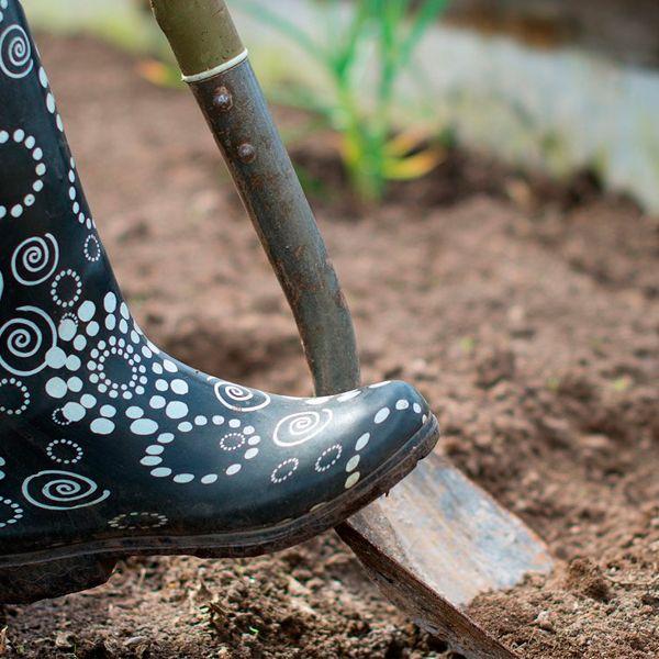 нужно перекапывать огород осенью