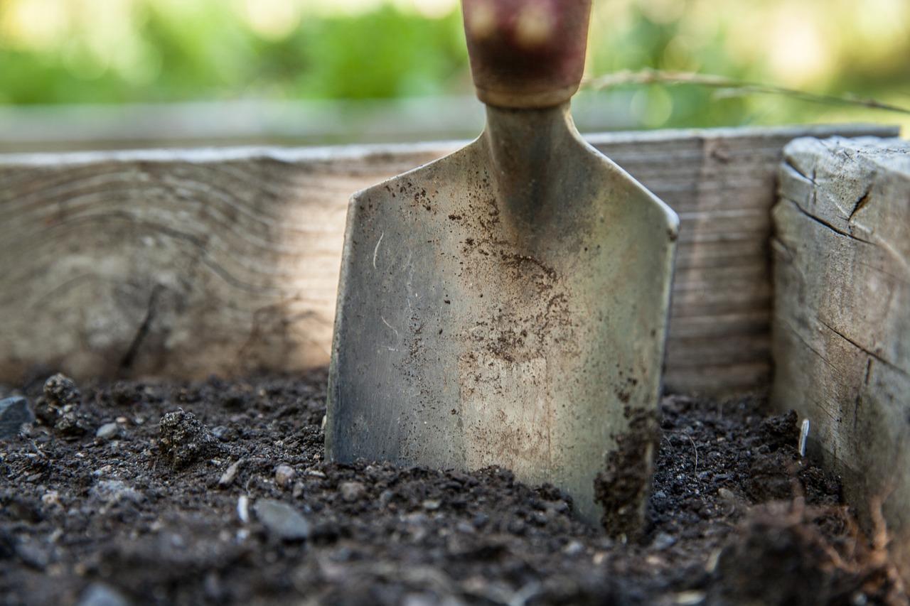 как определить кислотность почвы в домашних самостоятельно