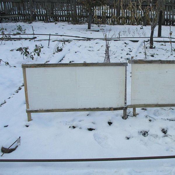 щиты для снегозадержания в огороде